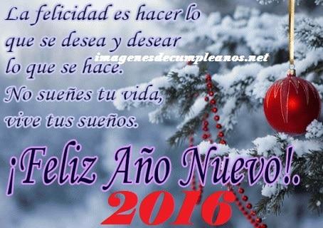 Feliz año nuevo 2016 vive tus sueños